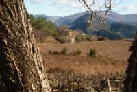 Une journée dans les Baronnies provençales