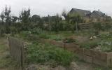Découvrez le jardinage bio et la permaculture
