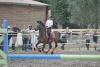 stages équitation initiation et perfectionnement
