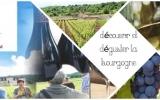 Les Ateliers du vin