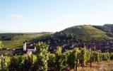 Spécialites alsaciennes au long de la route des vins