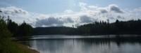 Pêche du corégone en lac