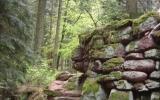 Mur paien , enceinte mystique , énergie tellurique ,énigme de la nuit des temps ...découverte dans la nature